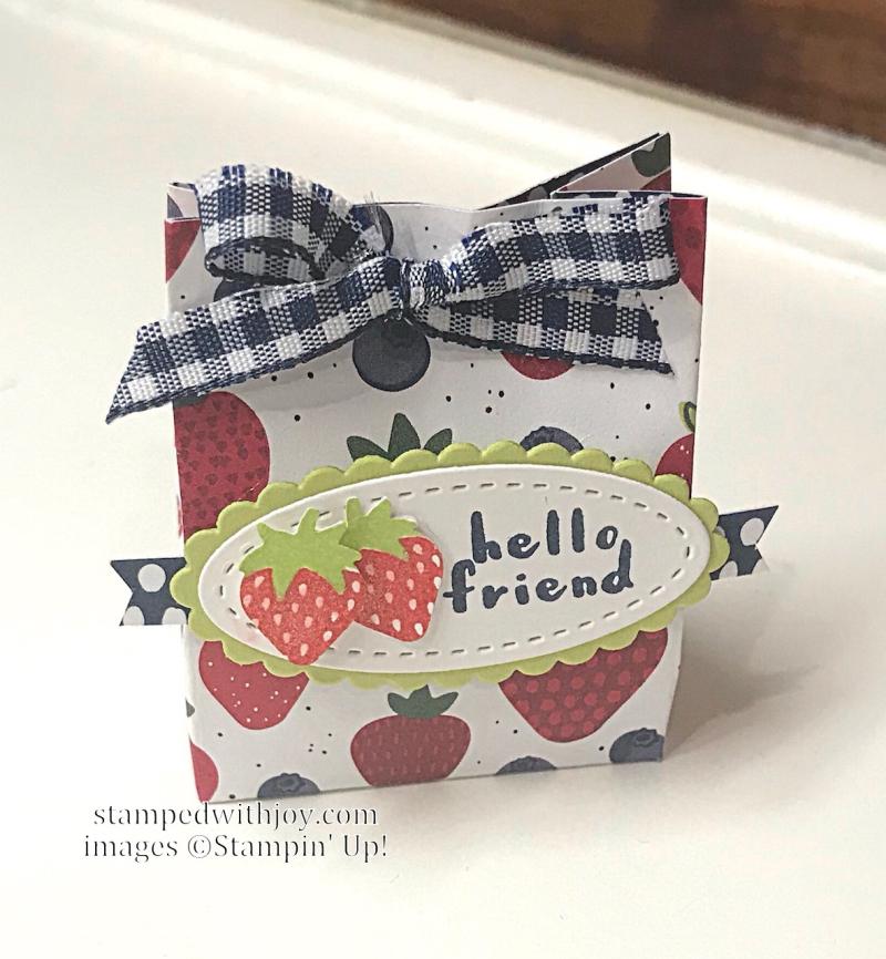 Fruit Basket Mini Treat bag